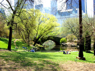 Spring in NYC, courtesy of Dougtone